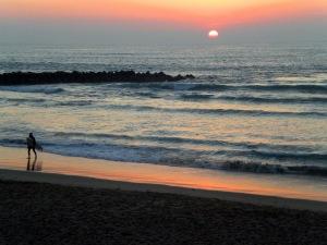 Jerez Sunset